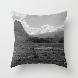 Alpine Valley Meadow Alps Mountains Landscape Bnw Throw Pillow