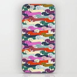 colored doggie pattern iPhone Skin