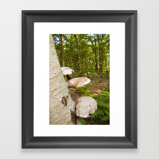Forest wild mushrooms Framed Art Print