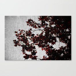 Black and Red Leaves Canvas Print