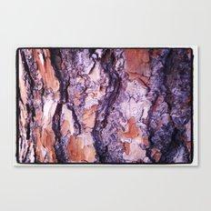 Good Wood Canvas Print
