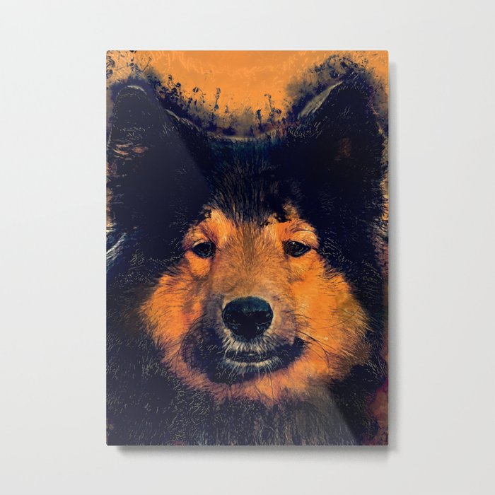 dog barry Metal Print
