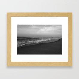 South Carolina Framed Art Print