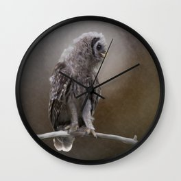 Young Barred Owl Perches on a Branch.Digital painting Wall Clock