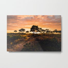 Old Airport Recreation Area Sunset 1 Metal Print