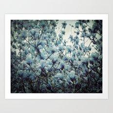 Magnolia Blues Art Print