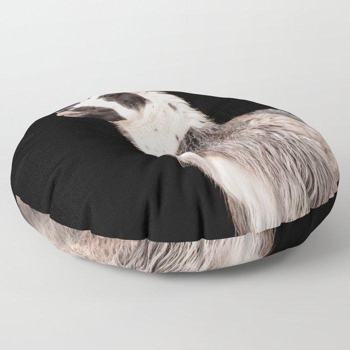 LAMA ( LLAMA) Floor Pillow