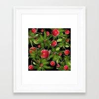 cherry Framed Art Prints featuring cherry by mark ashkenazi