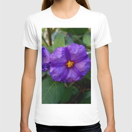 flower and nature - blue flower 2 T-shirt