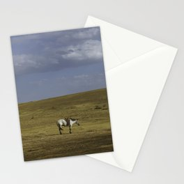 A Nomads Horse Stationery Cards