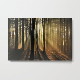 The Golden Forest (Color) Metal Print