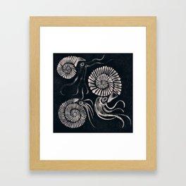 ammonites Framed Art Print