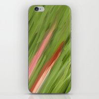 grass iPhone & iPod Skins featuring Grass by Paul Kimble