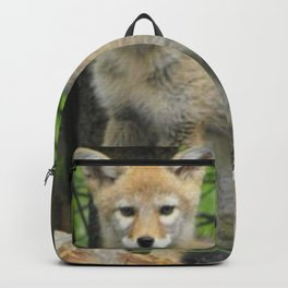 Coyote Pup Backpack