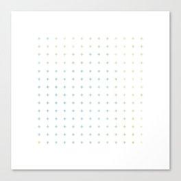 100 + plus Canvas Print