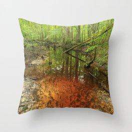 Turkey Creek, South Carolina Throw Pillow