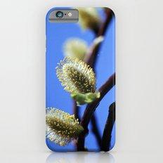 Willow Catkins iPhone 6s Slim Case