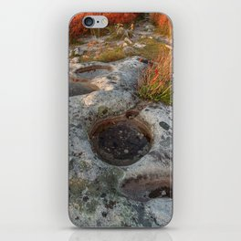 Autumn Huckleberry Fossil iPhone Skin
