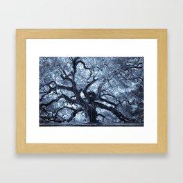 Angel Oak 4 Framed Art Print