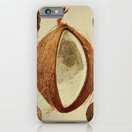 Vintage Print - Birds and Nature (1899) - Coconut iPhone Case