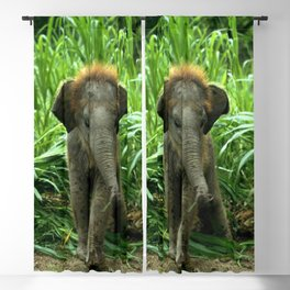 Elephant and Grass Blackout Curtain