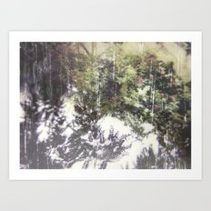 Floral Photo Transfer  Art Print