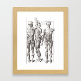 Doctor Grad Student Gift Ideas Bodies Medical Anatomy Drawing Framed Art Print