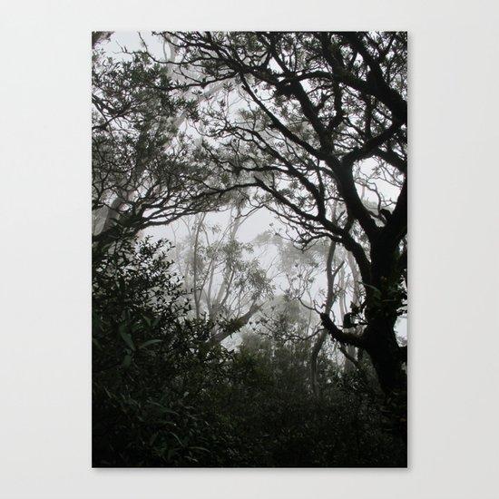 A Walk in the Clouds #2 Canvas Print