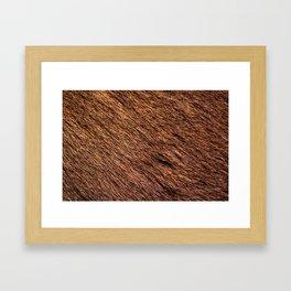 Safari Animal Fur Framed Art Print