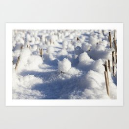 Snow covered field Art Print