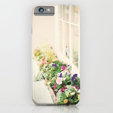 charleston flower boxes iPhone 6s Slim Case
