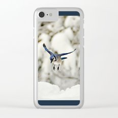 Blue Jay action Clear iPhone Case