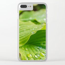 Hosta Leaves. Raindrops Clear iPhone Case