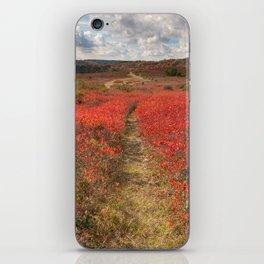 Autumn Huckleberry Trail iPhone Skin
