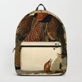 Ruffed Grouse (Bonasa umbellus) Backpack