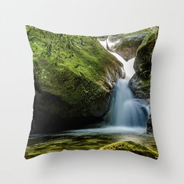 Uricanal Throw Pillow