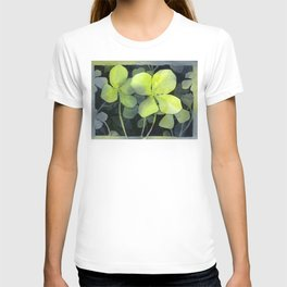 Clover Watercolor Four Leaf Clover Painting Lucky Charm Pattern T-shirt