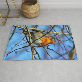 European Robin Donegal Ireland 37 Rug