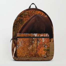 Horse Fall Days of Grazing Backpack