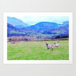 Nosy Sheep at Borrowdale, Lake District, UK Watercolor Painting Art Print
