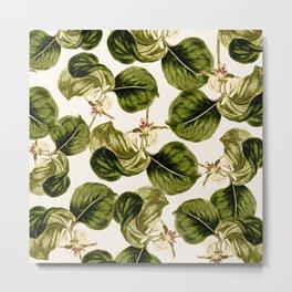 Botany Leaf Pattern Metal Print