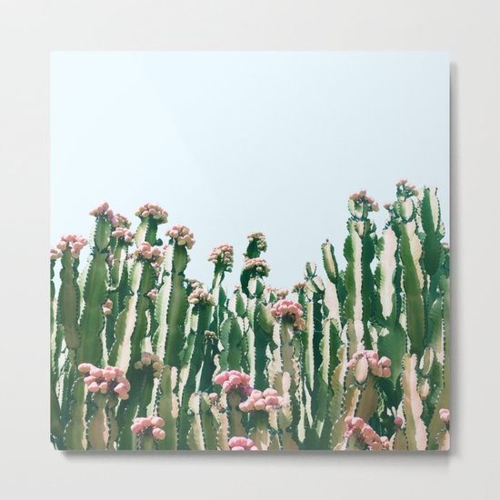 Blush Cactus #society6 #decor #buyart Metal Print