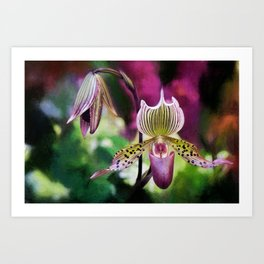 Colorful Orchid Art Print