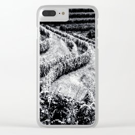 The fields of Friuli Venezia-Giulia cultivated with grapevines Clear iPhone Case