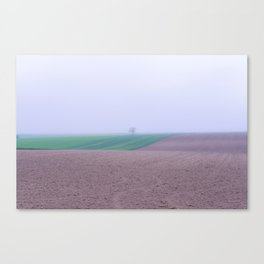 Tree in a Field in the Fog Canvas Print