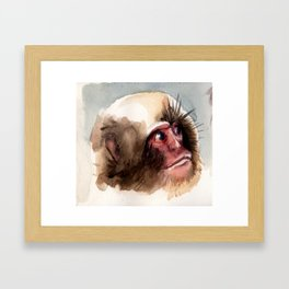 Macaco Framed Art Print