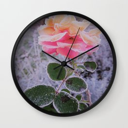 roses in the winter Wall Clock