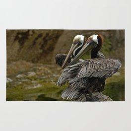 Brown Pelican Rug