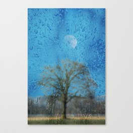 Concept landscape : The lonely tree Canvas Print