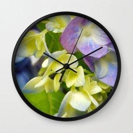 Hydrangea Blooms Wall Clock